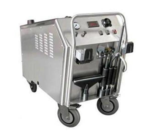进口蒸汽清洁机